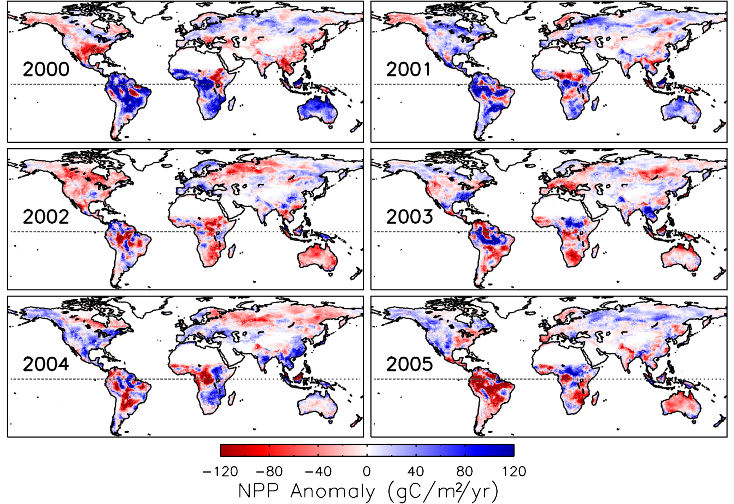 Global Interannual variability in NPP from 2000 to 2005