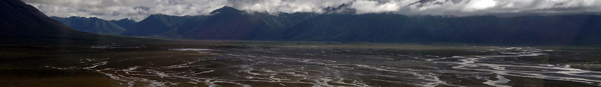Floodplain in Alaska