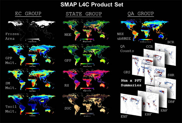 SMAP L4C Project Set