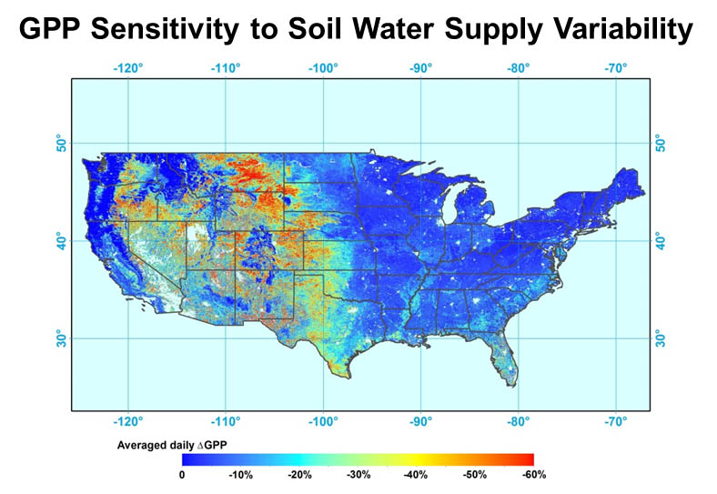 GPP Sensitivity to Soil Water Supply Variability